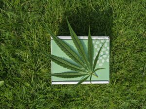 Herbadea CBD products package with cannabis leaf on lawn.