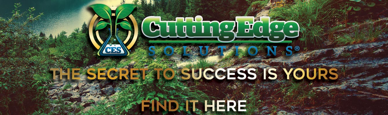 Cutting Edge Solutions: The secret to success is yours