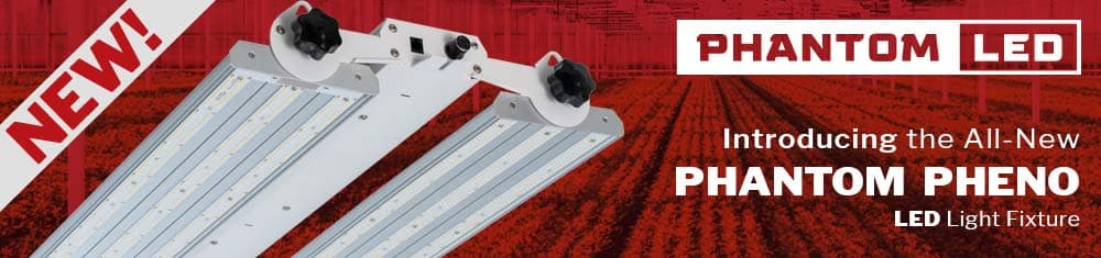 Introducing the All-New Phantom Pheno LED Light Fixture